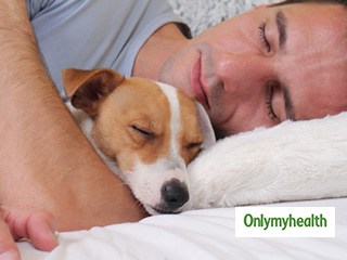 6 <strong>Benefits</strong> of Sleeping with your Dog
