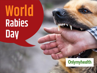 Animal Bite can cause Rabies: Know symptoms and treatment