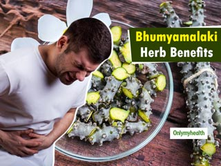 Protect your <strong>Liver</strong> and Treat Jaundice with <strong>Bhumyamalaki</strong> Herb