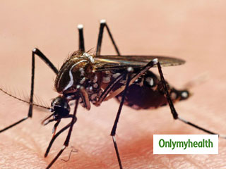 Malaria: 8 Fresh Cases Reported, <strong>According</strong> To Health Officials