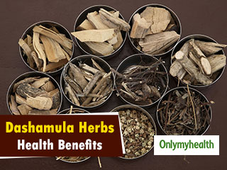 Dashamula Herbs Health Benefits: Reduces Migraine And Arthritis Pain