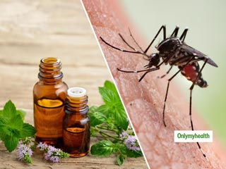 Natural Mosquito Repellents: These 6 Essential Oils Keep Malaria Mosquitoes At Bay