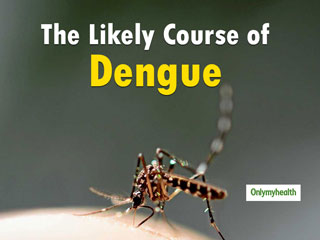 Here's All You Need To Know About Prognosis Of <strong>Dengue</strong> Fever