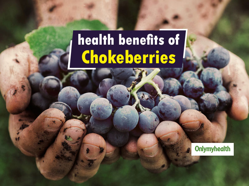 Chokeberries: Super Berries to fight Heart Diseases, Digestive Problems and more