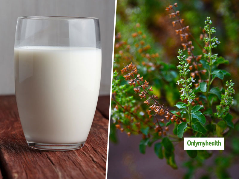 Why Drinking Tulsi Milk Is Good For Your Overall Health?