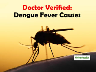 World Mosquito Day 2019: The Causes Of <strong>Dengue</strong> Fever Explained By Dr Poonam Sachdev