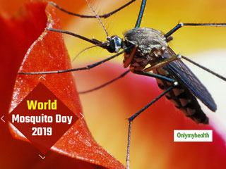 World Mosquito Day 2019: Signs And Symptoms of Cerebral Malaria