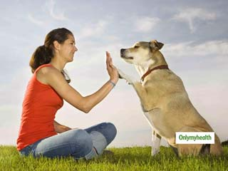 Study: Keeping A Pet Dog Would Improve Your Heart <strong>Health</strong>
