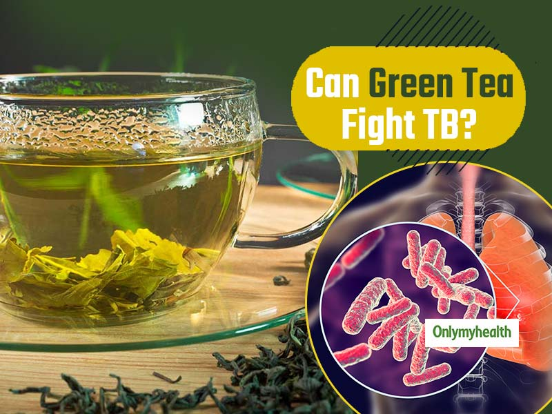 Green Tea Plant May Be Helpful in Tuberculosis Treatment, Finds Research
