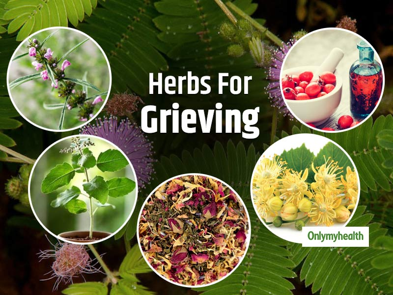 Overcome Sorrow and Grief With These 6 Healing Herbs