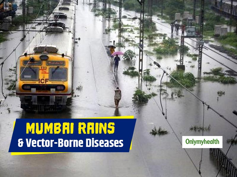 Monsoon in Mumbai and increase in vector-borne diseases: knowledge of the nature of these diseases