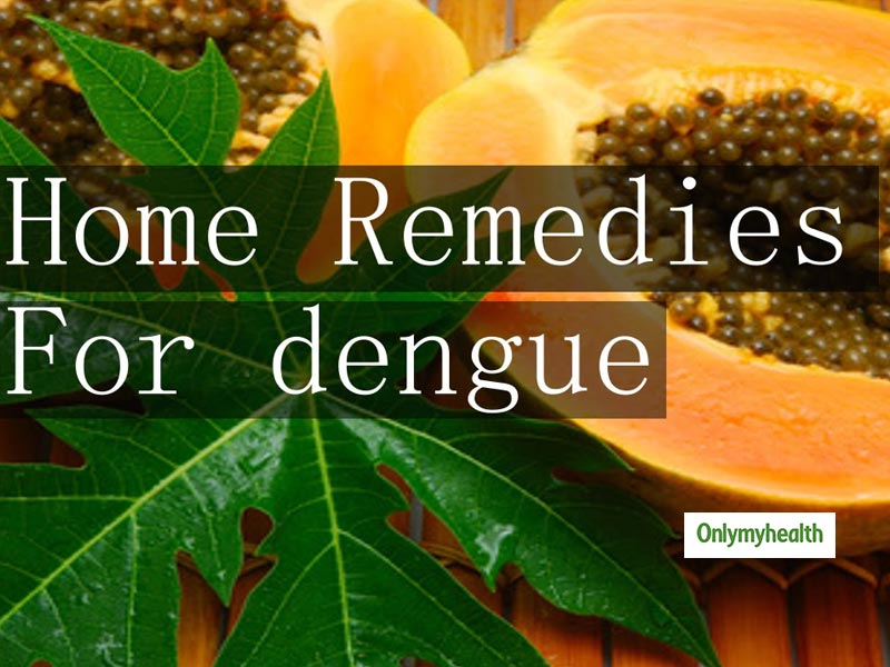 Natural Remedies for Dengue Prevention and Treatment At Home