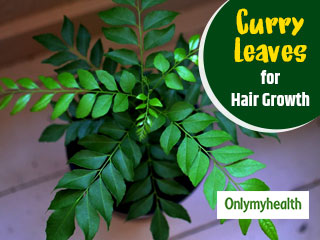 Curry Leaves for <strong>Hair</strong> <strong>Growth</strong>: Know ways to use curry leaves