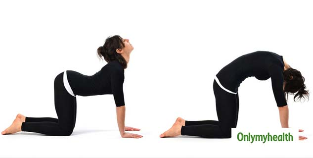 #Exercise To Relieve Back Pain Instantly