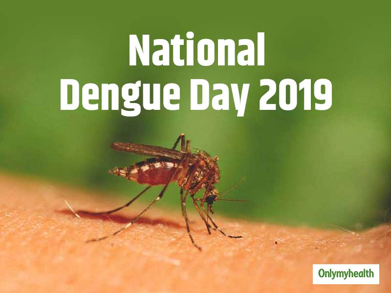 National Dengue Day 2019: Protect your children with these steps