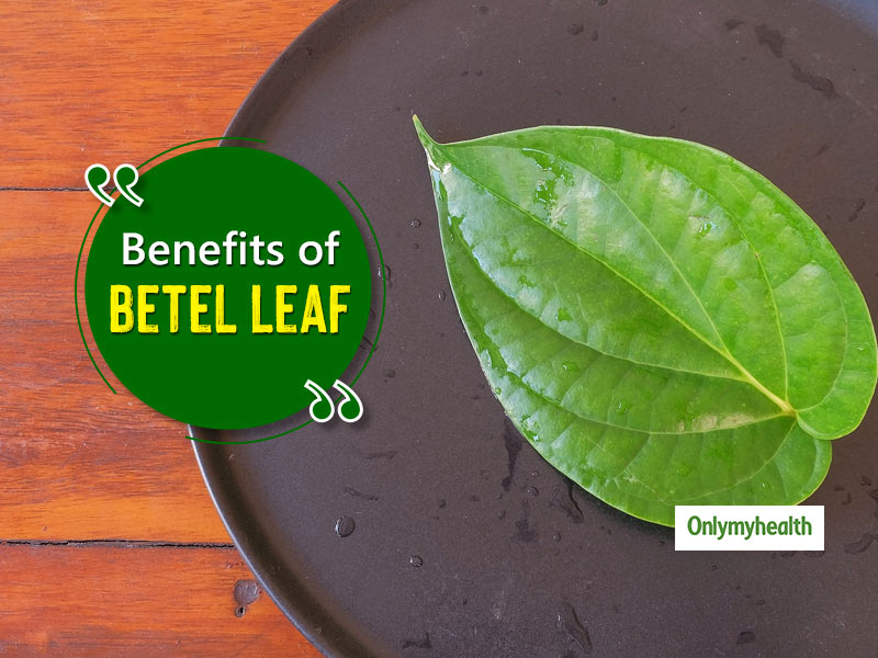 Ever Heard Of These Medicinal Benefits Of Betel Leaves?
