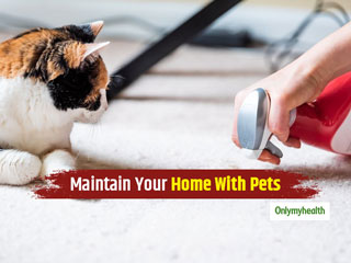 Tips To Maintain Hygiene At Home When <strong>Living</strong> With Pets