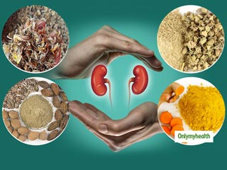 11 Secret Herbs To Keep <strong>Your</strong> Kidneys In Their Best Health
