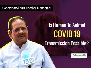 Coronavirus India Update: Is Human To Animal COVID-19 Transmission Possible?