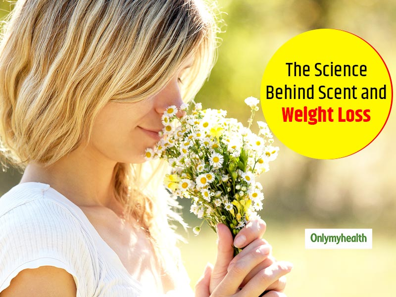 Scents Can Alter Fat Metabolism To Control Fat Restoration