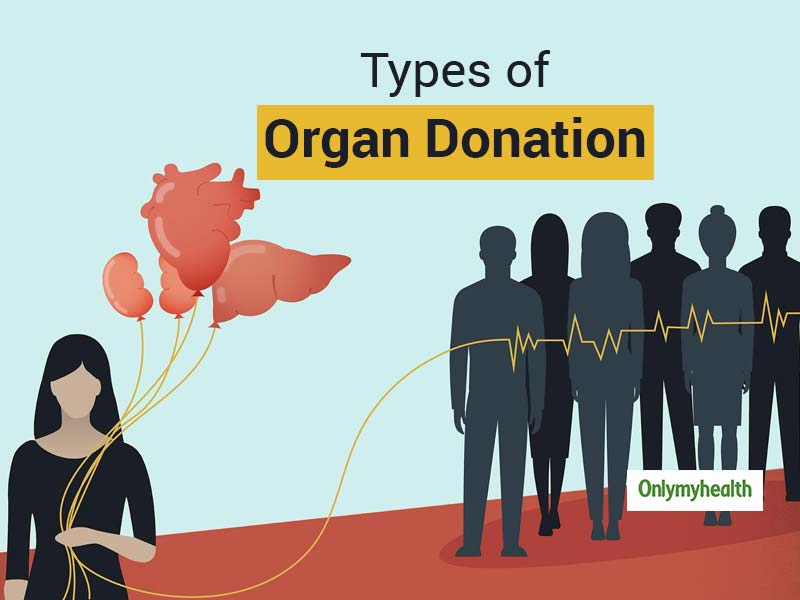 World Organ Donation Day 2020: Learn About Different Types Of Organ Donation In India