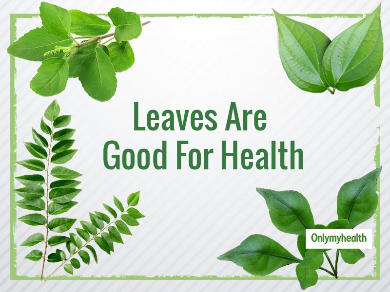 These 5 Leaves Are Too Good To Include In Your Diet, Says Dr. Swati Bathwal