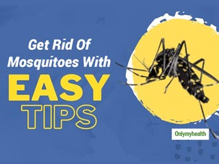Here Are The Most Effective And Easy Ways To <strong>Get</strong> <strong>Rid</strong> Of Mosquitoes