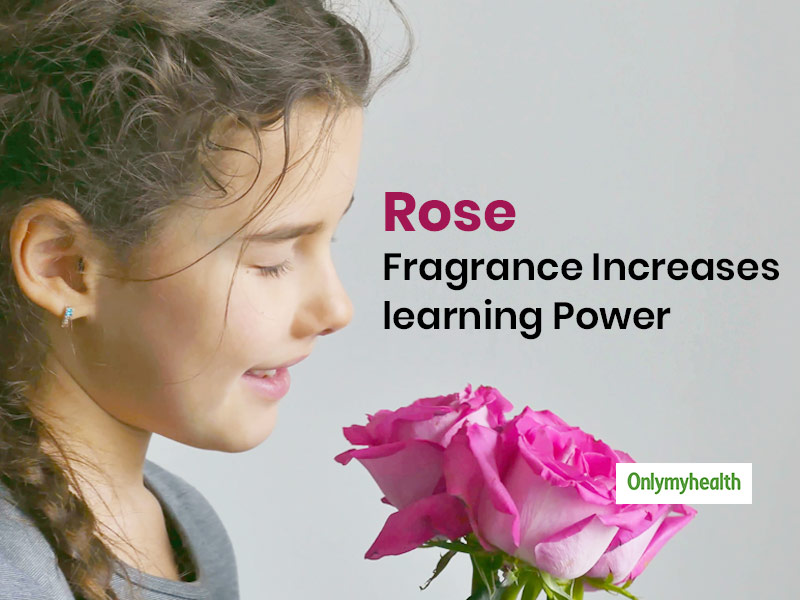 Rose Fragrance Can Enhance Learning Ability In Students