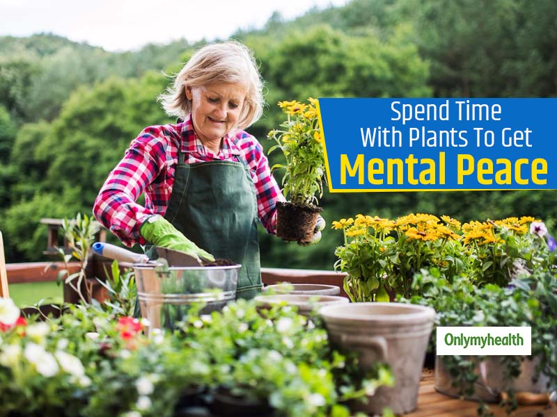 Gardening and Mental Health: 5 Reasons Why You Must Start Gardening