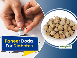 Ayurvedic Panacea: How To Use <strong>Paneer</strong> Dodi For Type 2 Diabetes?