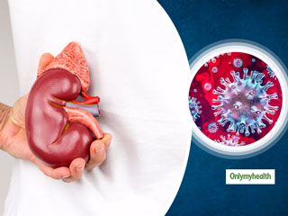Coronavirus And Kidney Disease: Dr Sanjeev Gulati Explains COVID-19 Effect On Kidney Health