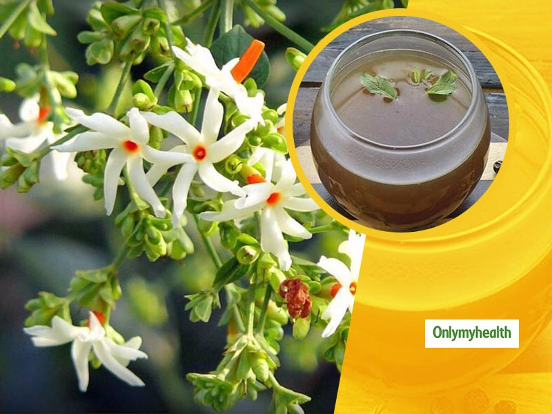 Night Jasmine Flower Medicinal Uses: Learn-How To Prepare Harsingar Decoction