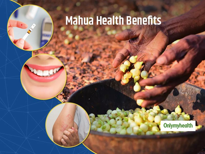 Did You Know Eating Mahua Can Fix Many Major Health Problems? Find Out Here