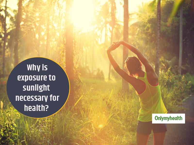 Take More Natural Light For Its Myriad Benefits. Know-How It Makes Your Health Better In 5 Ways
