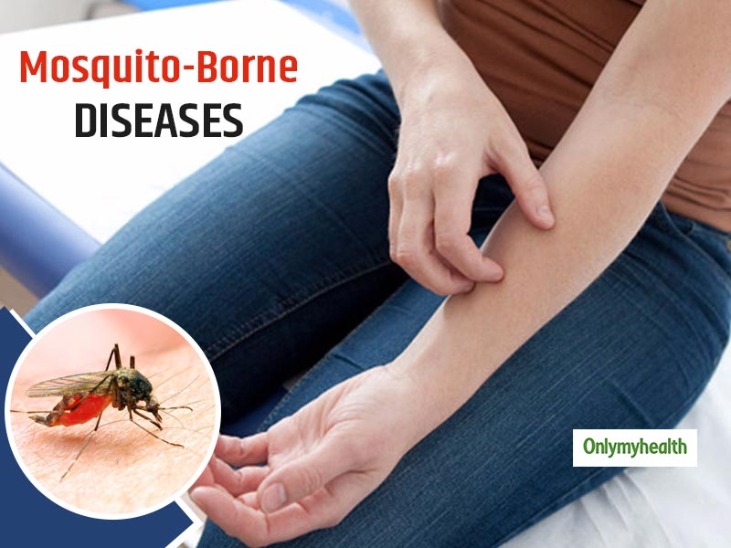Know Everything About Mosquito-Borne Diseases, Symptoms And Treatment