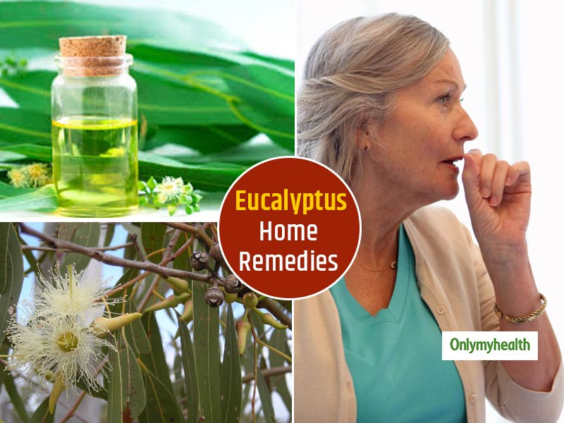 Eucalyptus Benefits: 5 Home Remedies To Relieve Severe Respiratory Problems