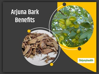 Terminalia Arjuna or Arjuna Tree Bark <strong>Benefits</strong>, Know Its Ayurvedic Significance