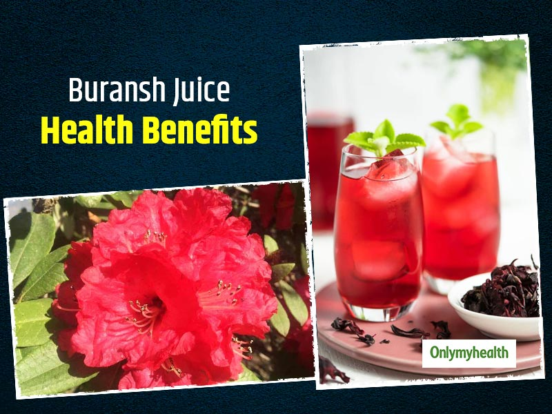 Buransh Juice: Health And Medicinal Benefits Of Consuming This Himalayan Flower Drink