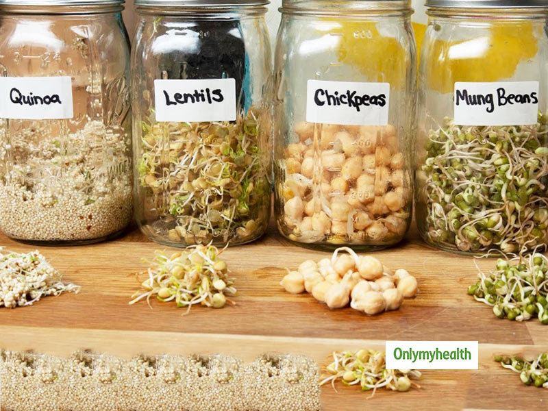 Sprouts Guide: Find All Types Of Sprouts You Can Make For Healthy Eating