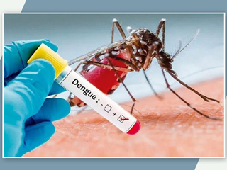 National Dengue Day 2021: Different Kinds of Dengue Infections and Their Mode of Transmission