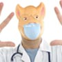 10 Facts about Swine <strong>Flu</strong>