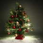 <strong>X</strong>-mas Tree could make you sick