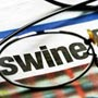 Take care! Swine <strong>flu</strong> stages a comeback